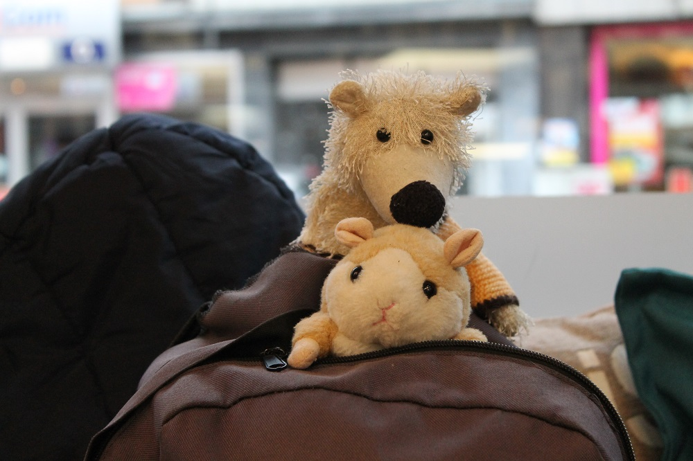 Lothar's rucksack sits next to him on the bench with his two mascots, Anja-Marie the hamster and Lukas the polar bear. Photo: Sabrina Burbach